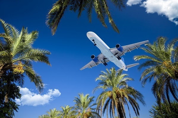 Airliner passing over tropic palm trees. Adobe RGB.